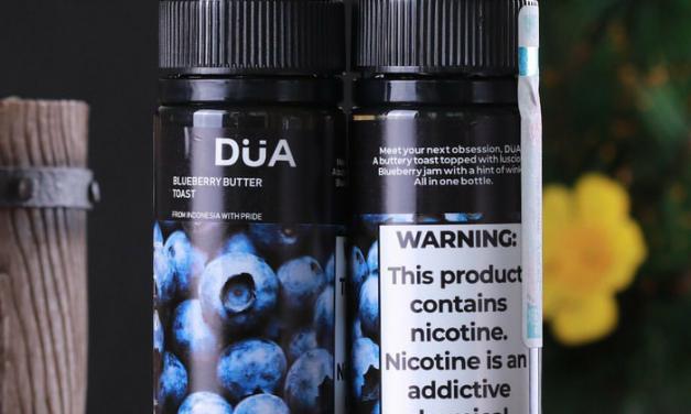 Liquid Freebase Rekomendasi Dua Blueberry