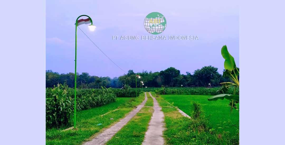Memilih Tiang Lampu Unik Untuk Pedesaan