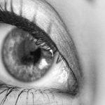 2 Produk Eyelashes Berkualitas Dunia