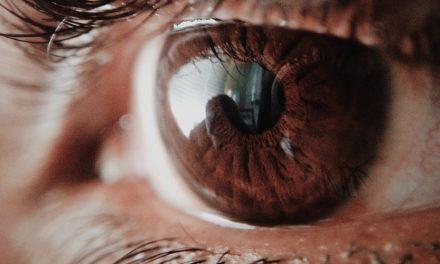 5 Rekomendasi Bulu Mata Palsu