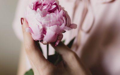 Makna Bunga Handbouquet Cocok untuk Wisuda