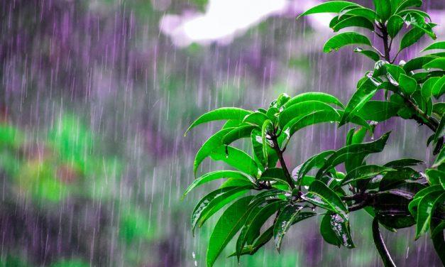 Tips Mengatasi Rumah Kebanjiran
